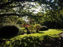 Halifax Hall Garden